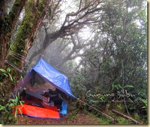 Camping Sungai Sedim