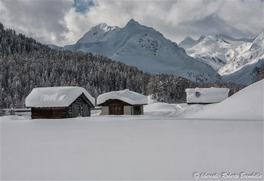 2014-02-09_Maloja (114)-2 (Medium)