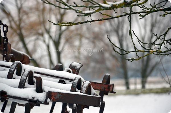 Schneesonntag 20zwölf (10)