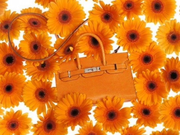 hermes-tiny-birkin-arancione