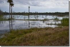 Shallow wetlands