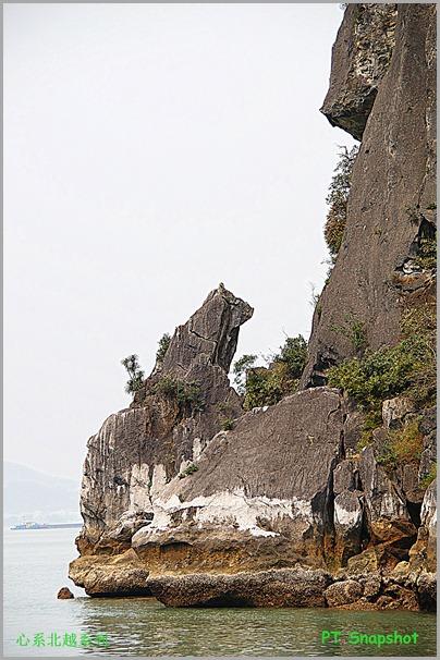 下龙湾狗形状的岩石