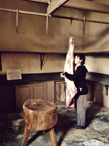 Meat Larder ,Art Inspiration at Petworth House , West Sussex , Victorian Era Aestetics