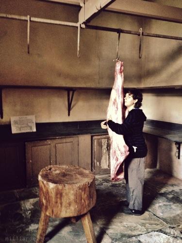 Meat Larder ,Art Inspiration at Petworth House , West Sussex , Victorian Era Aestetics