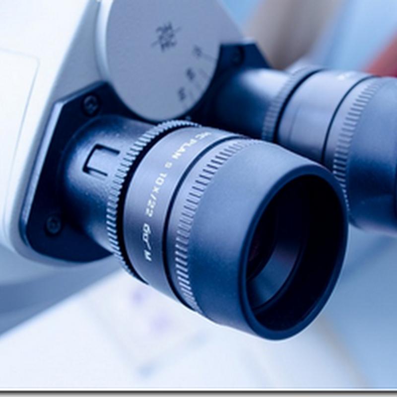 Pengertian Bioteknologi, Bioteknologi Konvensional dan Bioteknologi Modern