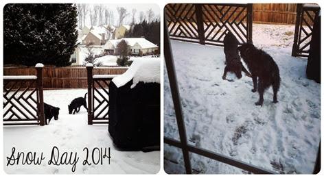 snowday2014