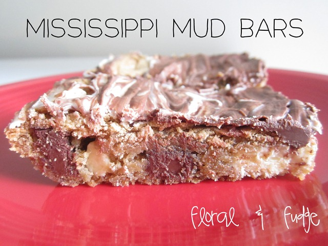 mississippi-mud-bars