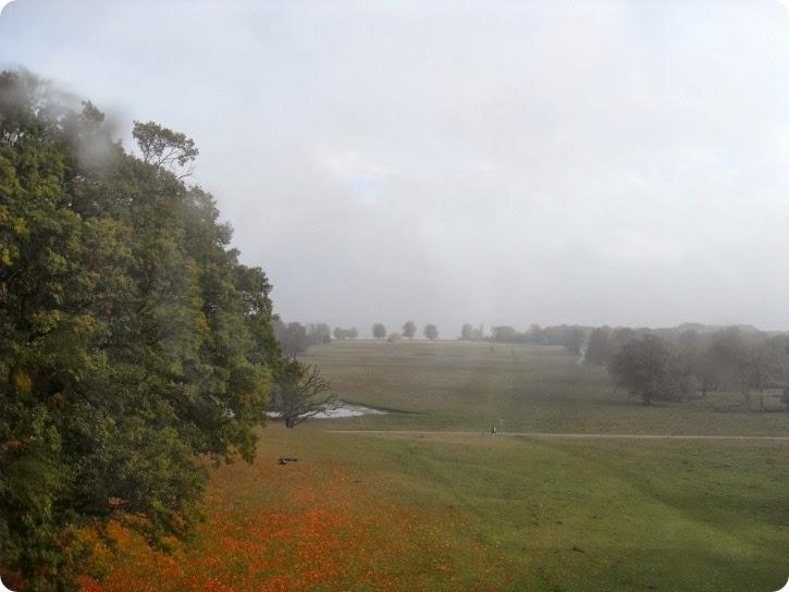 Udsigten øverst fra Eremitagen - oktober 2013