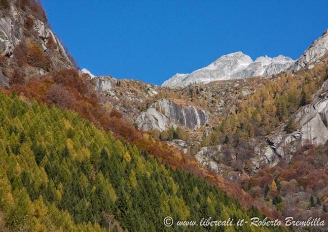 12-2014-11-01_Val di Mello (27)