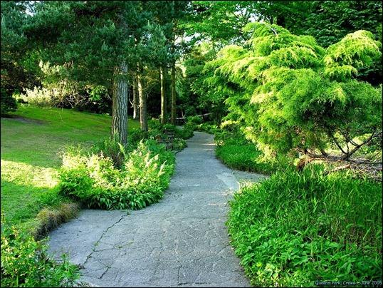 Crewe Park Gardens 001-[CP8800]