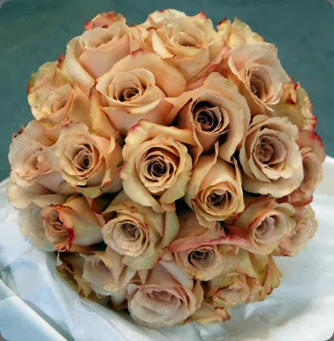 quicksand roses mood flowers 1233458_691124270901373_1811864687_n