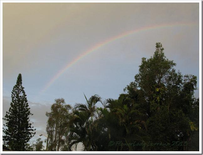 07-03-morning-rainbow3