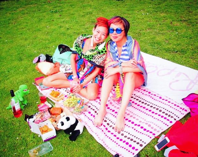 joyce picnic