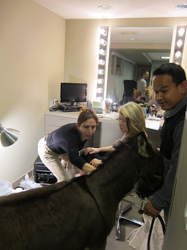 And now Rufus is getting a little hair and makeup!  Look!  Even Gyurme went along!