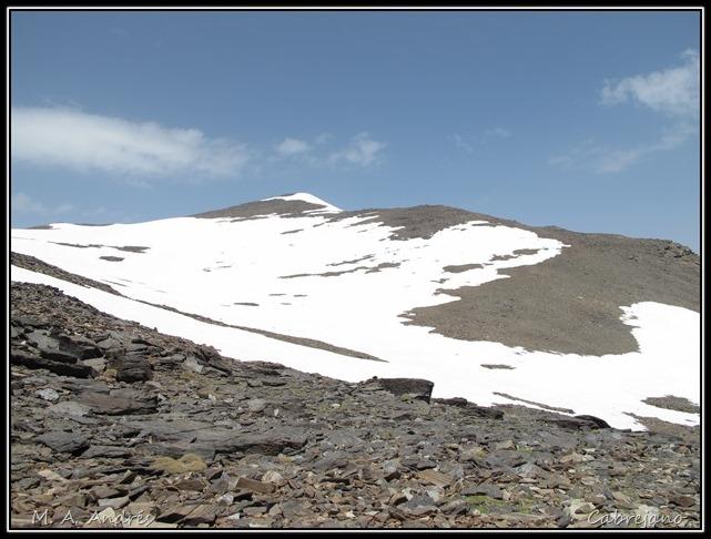 Sierra Nevada 204