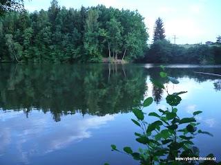 Letovický rybník 2