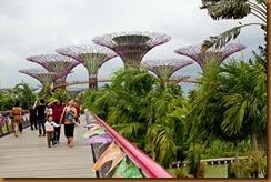 dragonfly bridge to gardens