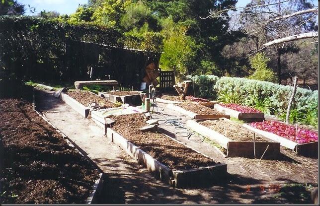 herb garden 002