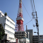 tokyo tower in Tokyo, Tokyo, Japan