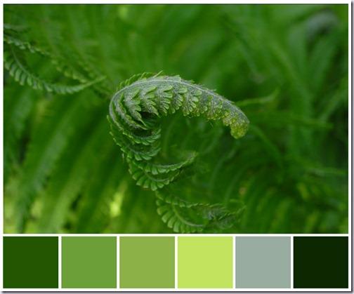 varen--kleurenbalk