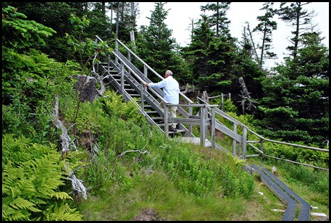 20e - Sunsweep Trail - Up to the Coastal Cliffs