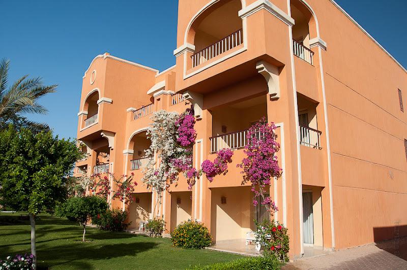 Отель Caribean World Resort Soma Bay. Хургада. Египет. Вот такие оранжевые домики увитые плющем и заполняли территорию отеля, размещённые двумя ёлочками вокруг цепочки бассейнов, не смотря на скученность, не вызывали ощущения тесноты.