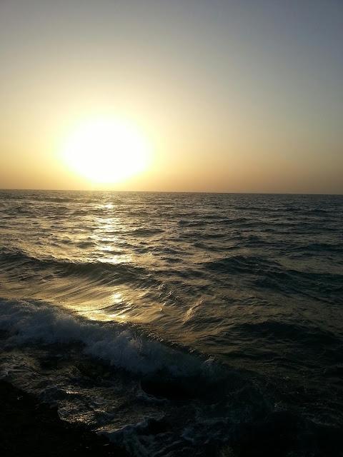 הים האדום