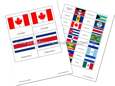 Flags of North America Preview