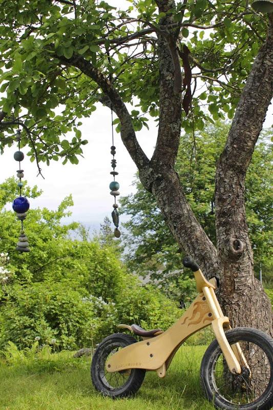 Plommetre og sykkelB88