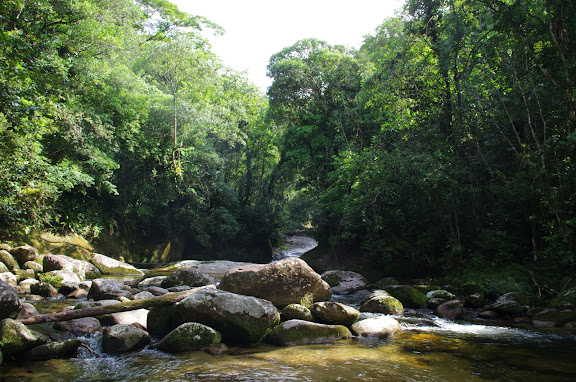Rio Pouso Alto. Sertao de Barra do Una (Sao Sebastiao, SP). 25 février 2012. Photo : J.-M. Gayman