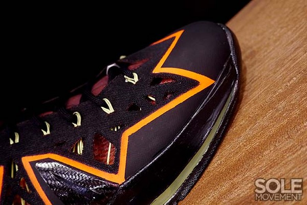 Nike Project Lion LEBRON X Customization Project in Philippines