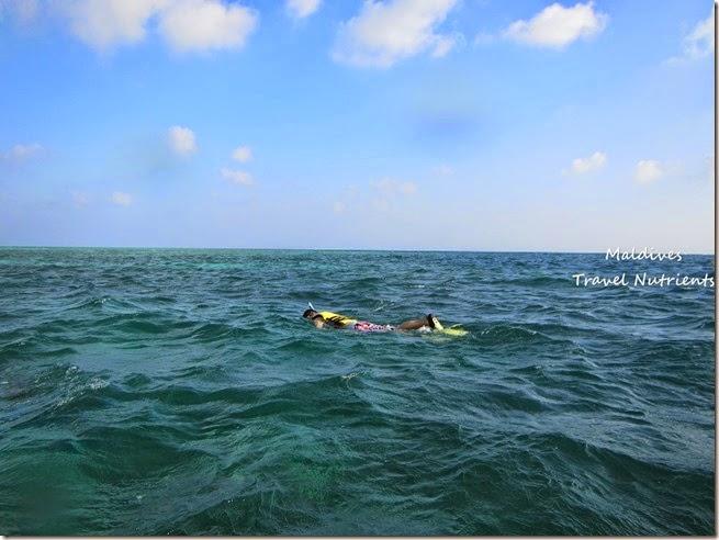 馬爾地夫 浮潛 (62)