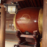 giant drum at meiji shrine in Yoyogi, Tokyo, Japan