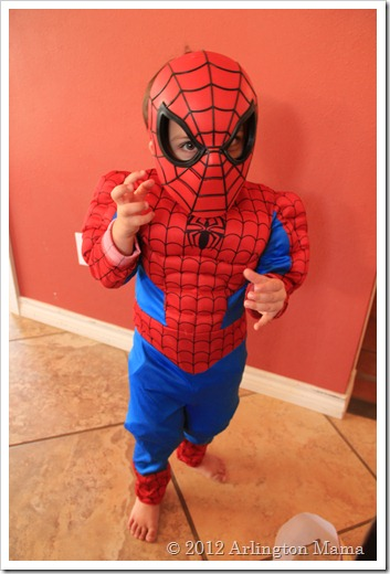 """Spiderman costume"", ""Superhero Birthday Party"""