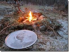 fire well & tree