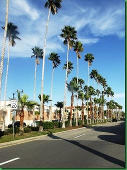 Venice and Venice Beach 115a