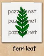 fern leaf-200