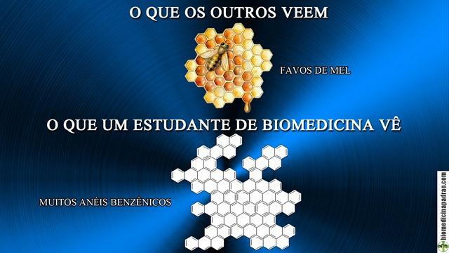anéis benzênicos biomedicina