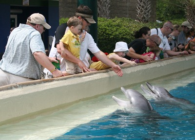 Sea World (20)