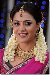 Nisha Agarwal Latest Hot Navel Show Photos in Saree, Nisha Agarwal Hot Saree Pictures Images