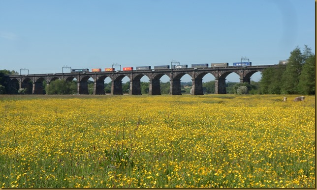 SAM_5724 Dutton Viaduct