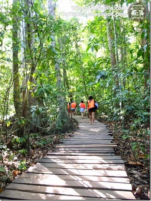 sheridan-beach-resort-sabang-puerto-princesa-palawan-tour (7)
