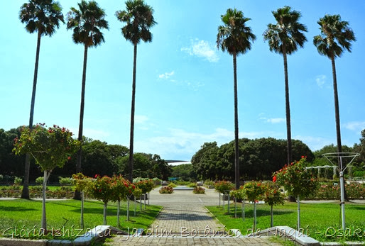 34 - Glória Ishizaka - Jardim Botânico Nagai - Osaka