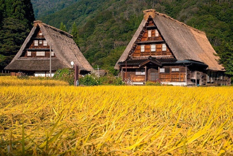 gassho-zukuri farmhouse-9