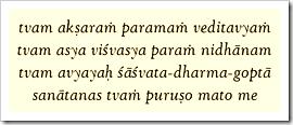 Bhagavad-gita, 11.18