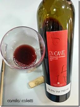 encante-vinho-e-delicias