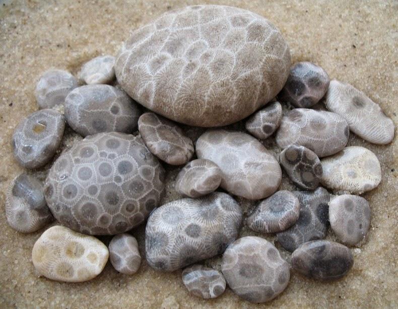 petoskey-stones-4