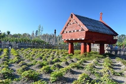 2012-04-22 New Zealand 043