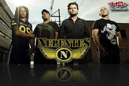 nepentesband