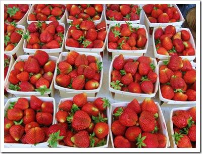 strawberries rhinebeck farmers market